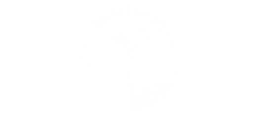 Rose Saatzucht